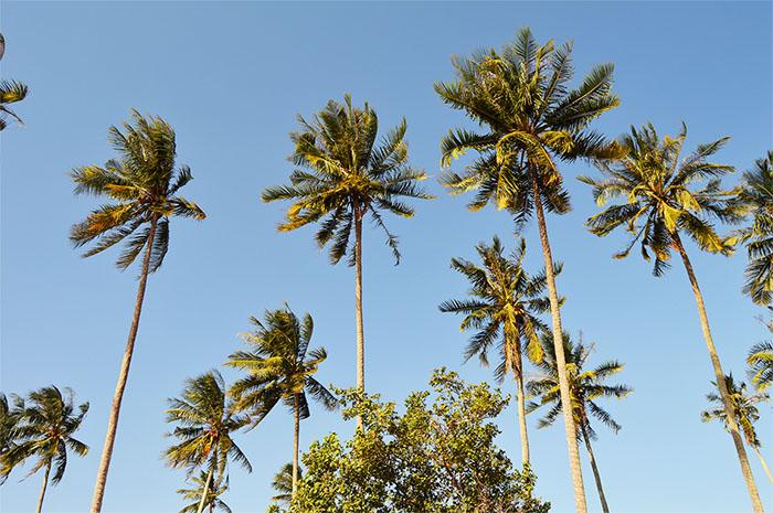 Pantai Takisung, Destinasi Wisata Populer di Kalimantan Selatan